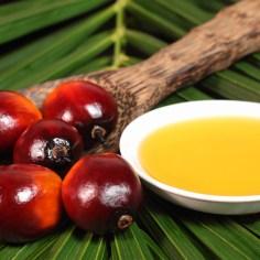 Ulje ploda uljane palme