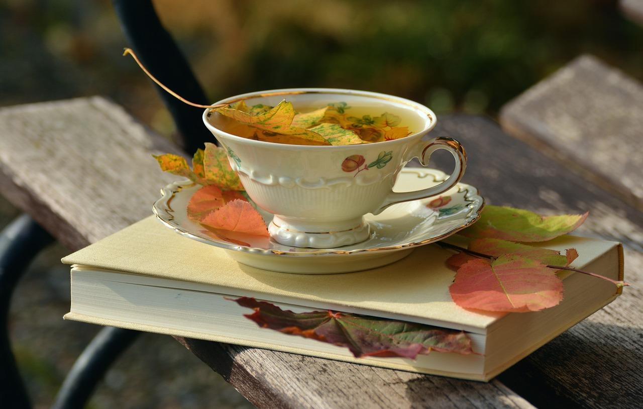 Knjige za jesenje dane i noći: Avanture i neobične sudbine uz šum opalog lišća
