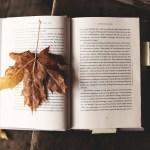 Sajam knjiga u baš niskom startu: Jesenja groznica čitanja 3. deo