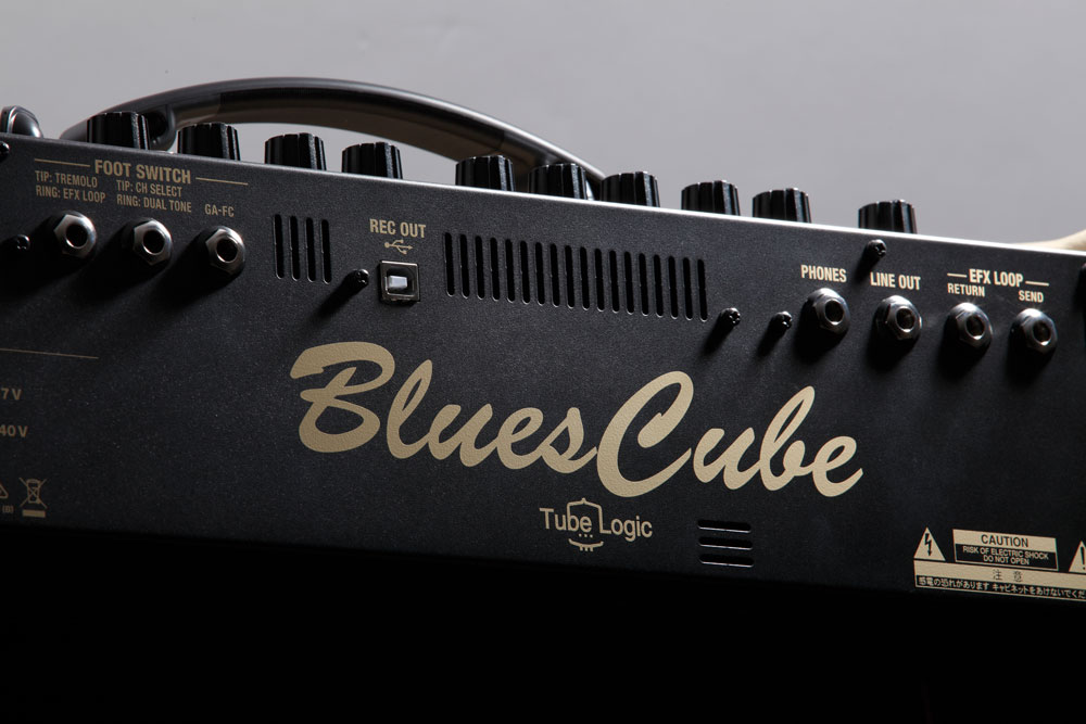 Roland Blues Cube Artist Rear Panel