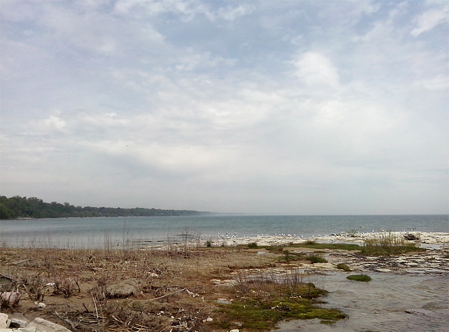 Sheboygan shore