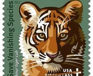 Congress Pushing the Tiger Stamp... and Maybe an Elephant Stamp?