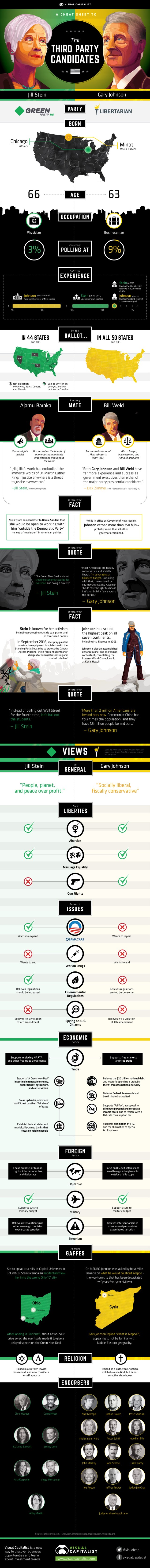 infographic-third-party-candidates