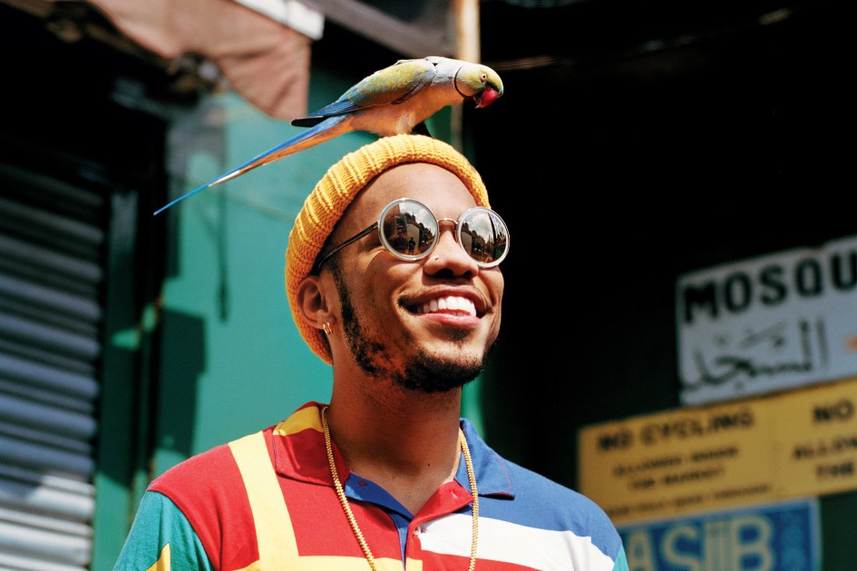 Image result for Anderson .Paak