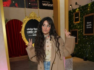 Meet the Camilizers: Camilia Cabello Fans Stan Shawn, Will 'Protect' Taylor