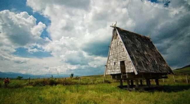 Gambar Rumah Tambi