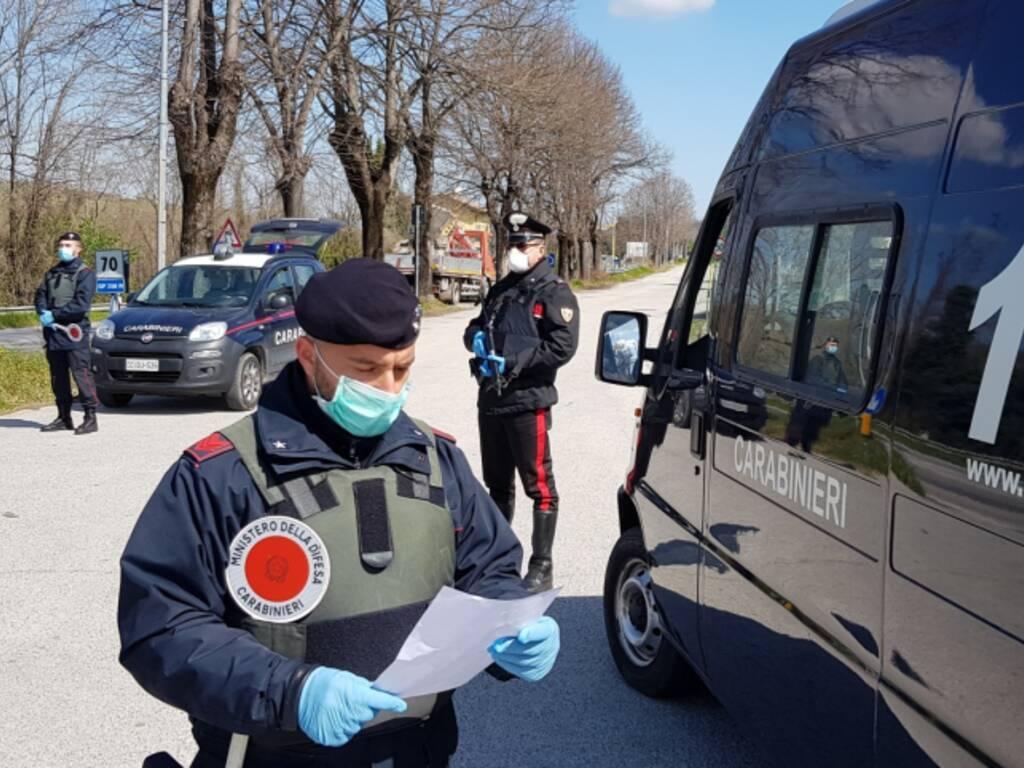 """Novafeltria. """"Sto andando con urgenza dal veterinario"""" ma la ferita era  fatta ad arte - RiminiNotizie.net"""