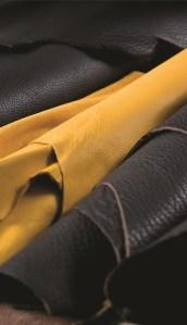Acaqua di Parma Cologna Leather