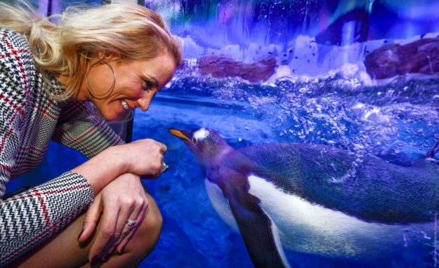 Elodie Gossuin marraine de Flocon le bébé Manchot Royal né à Sealife Paris Val d'Europe
