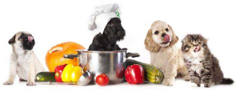 B.A.R.F - Je cuisine pour mon chien