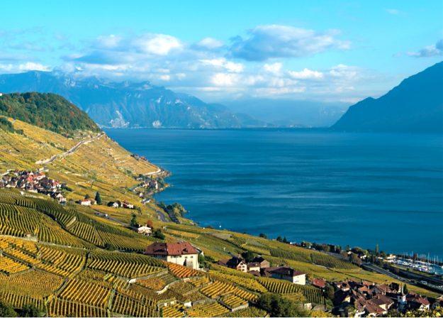 Culture du vin en Suisse