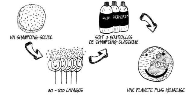 La majorité des shampooings liquides disponibles sur le marché sont principalement composés d'eau, de tensioactifs et autres produits synthétiques, de parfums, de conservateurs et de flacons en plastique avec un bouchon. La raison évidente pour laquelle le shampooing traditionnel nécessite une bouteille en plastique est qu'il est liquide ! Lush s'est demandé : «Et si nous en retirions l'eau et en faisions un produit solide ? Serions-nous alors en mesure d'éliminer les bouteilles en plastique ?» La réponse trouvée par Lush fut un OUI retentissant.