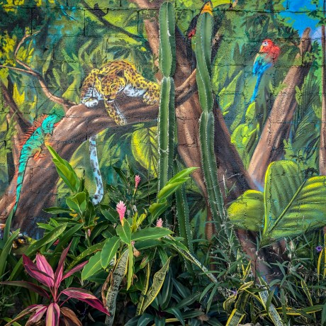 Selva, Mexico, 2019 (mural by unknown artist, Mexico)