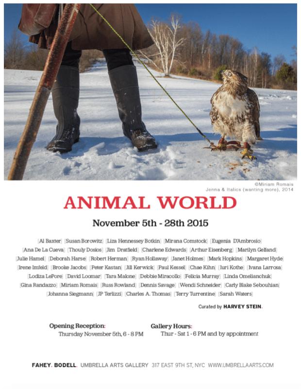 evite_animalworld