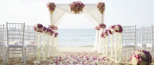 """CARIBBEAN DESTINATION WEDDING EXPERIENCE"". Here, you will be able to find a unique selection of WEDDING MENUS that have been carefully crafted to add an extra touch of distinction to your event. Please ask your Wedding Coordinator on the Additional Costs of these special menus. » Prices are always on USD unless specified differently. Taxes included. » Prices, inclusions, extra services and general conditions may vary. Should there be any changes on these, you will be notified prior to the celebration of your event and contract signature. » Caribbean Wedding Packages by Be Live Hotels are available for all International markets."