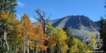 Wheeler-Peak-colors