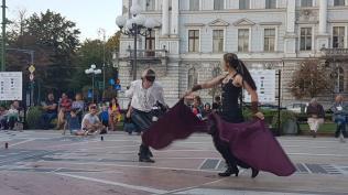 Eu-aleg-Romania-show-Arad-12b