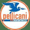 bocconi-sport-team