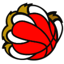 new-basket-prevalle