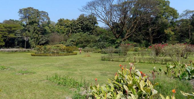 Botanical Garden kolkata