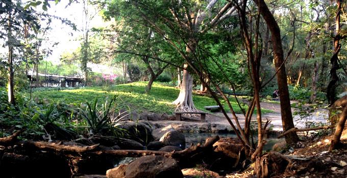 osho garden pune