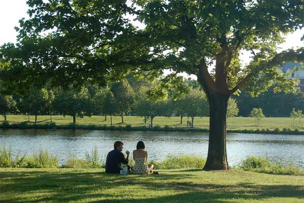 Couple picnicking on the Charles River