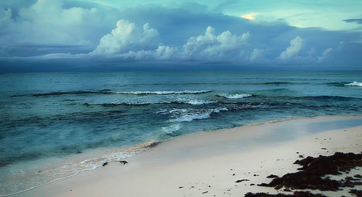 Nature in Bahamas
