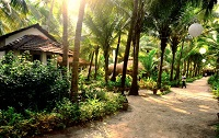 Yab Yum Resort Goa
