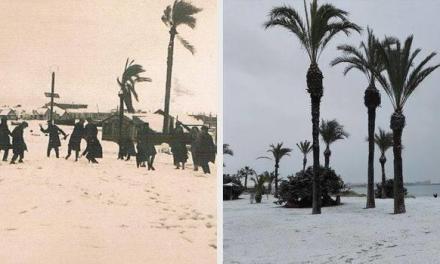Ninge pe plajă în Spania