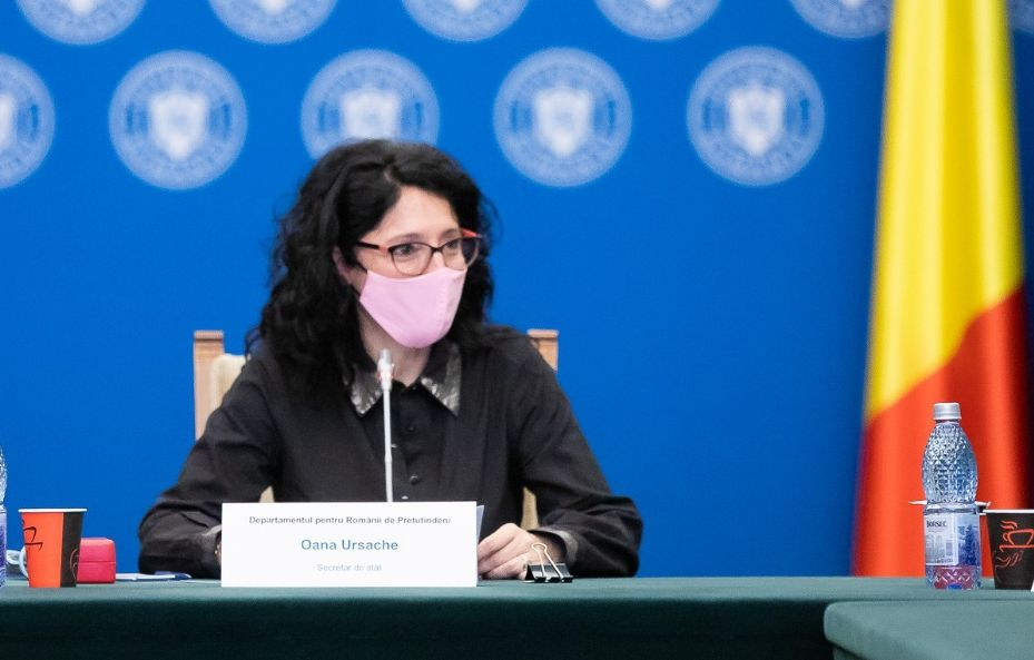USR-ul vrea să facă propagandă cu banii diasporei