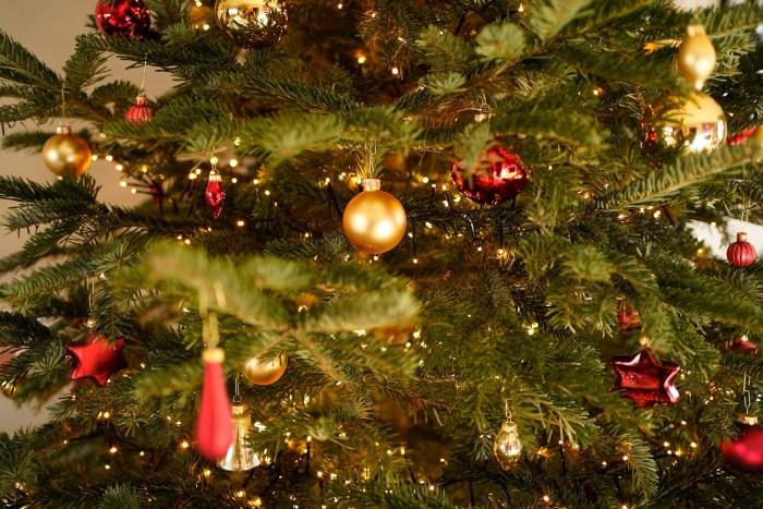Ritiro e riciclo degli alberi di Natale usati a Roma