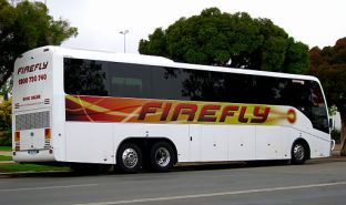 Firefly bus