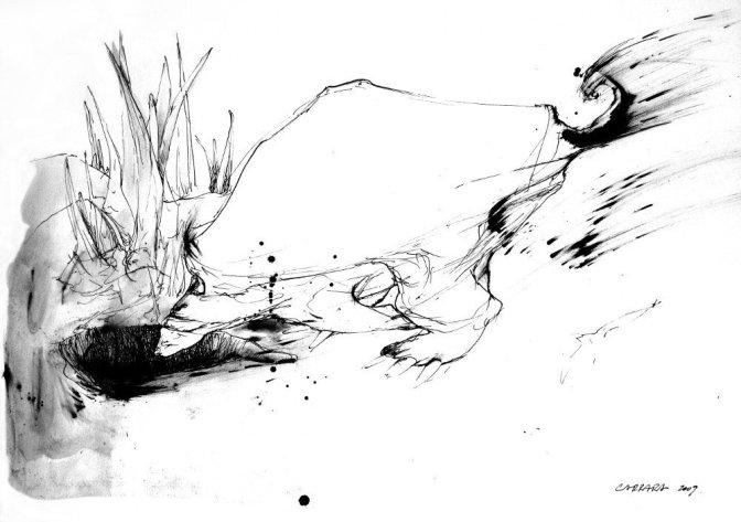 Tatú carreta - tinta sobre papel - 20 x 30 cm
