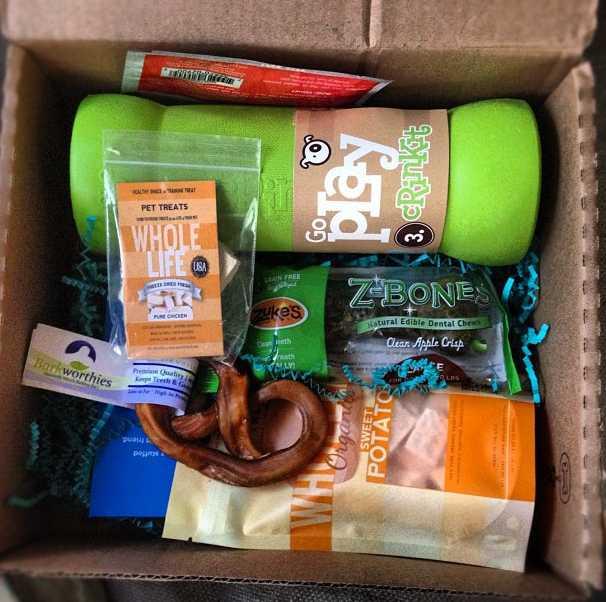 Barkbox Gift Gift Ftempo