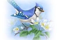Photo of Mire jó a szárny annak, aki úgysem érzi, ha a szél simogatja?