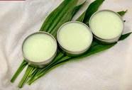 Photo of Lándzsás utifű krém recept, ekcémára és csípésekre