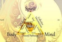 Photo of A szaglás ,az ízlelés, a tapintás,a látás és  a hallás a kulcsa és kapuja a test-lélek- szellem egyensúlyának.