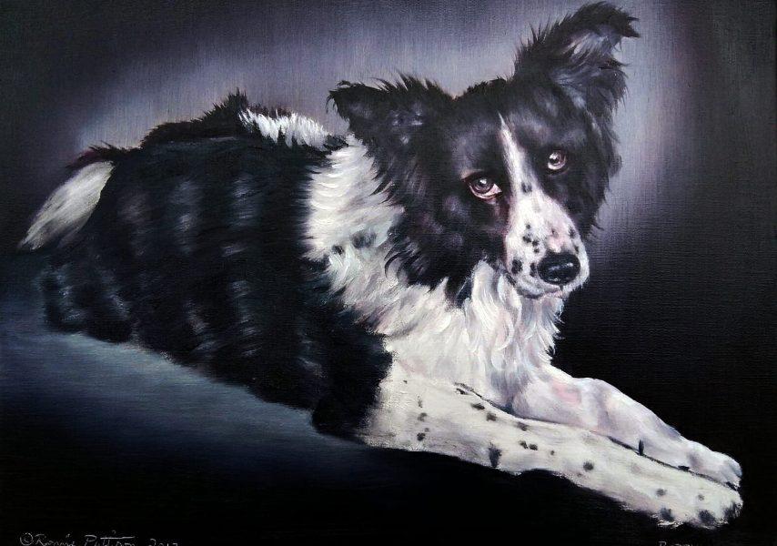 Bobby - Pet Portrait Oil Painting