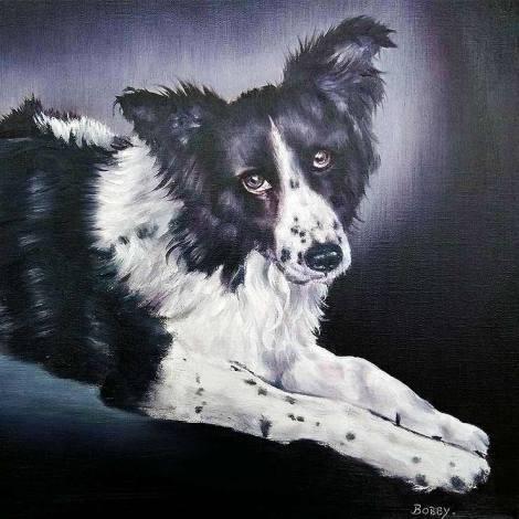 Bobby - Pet Portrait