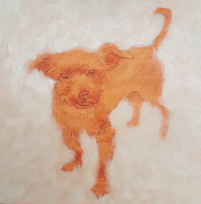 Pippin - Background - Pet Portrait