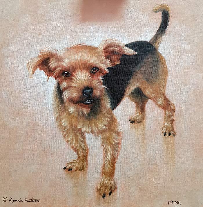 Pippin - Complete - Pet Portrait
