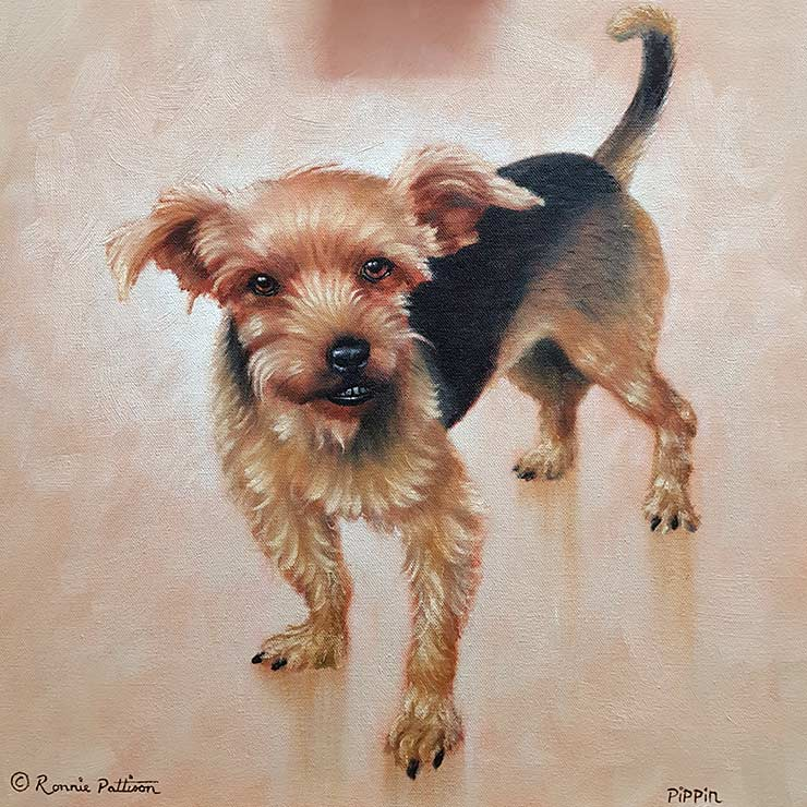 Pippin - Pet Portrait