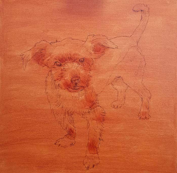 Pippin - Wash - Pet Portrait