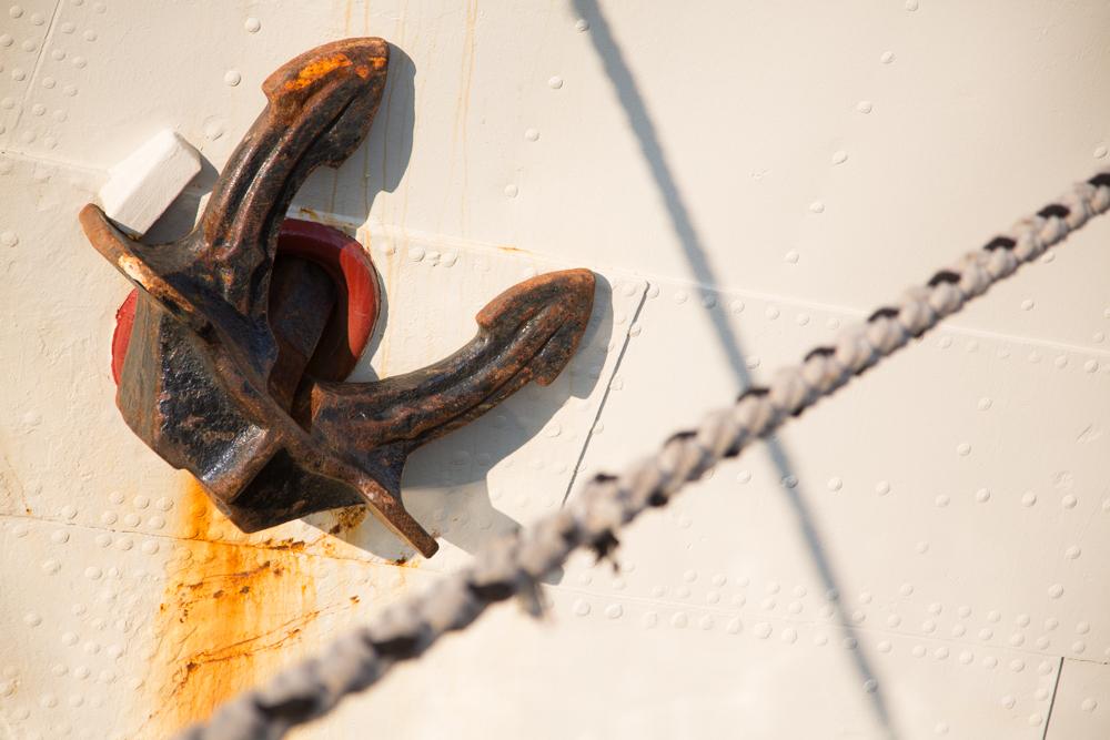 Saildag in beeld | Ronalddejongfotografie-6