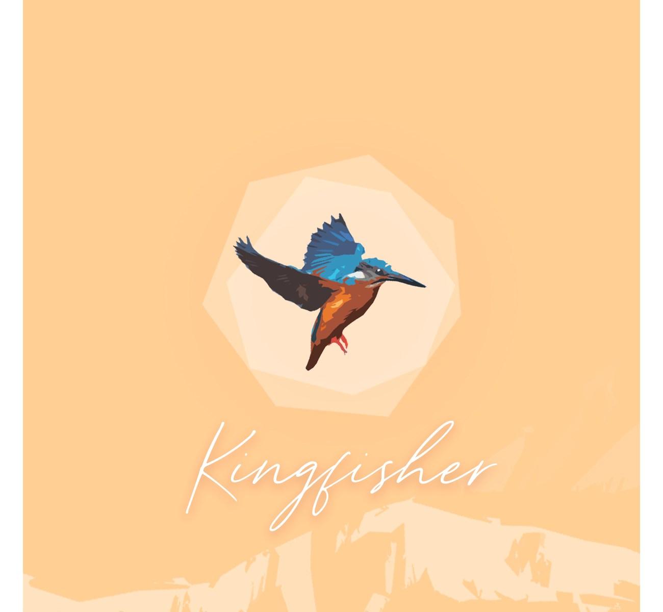 Kingfisher by Ronald JJ Wong