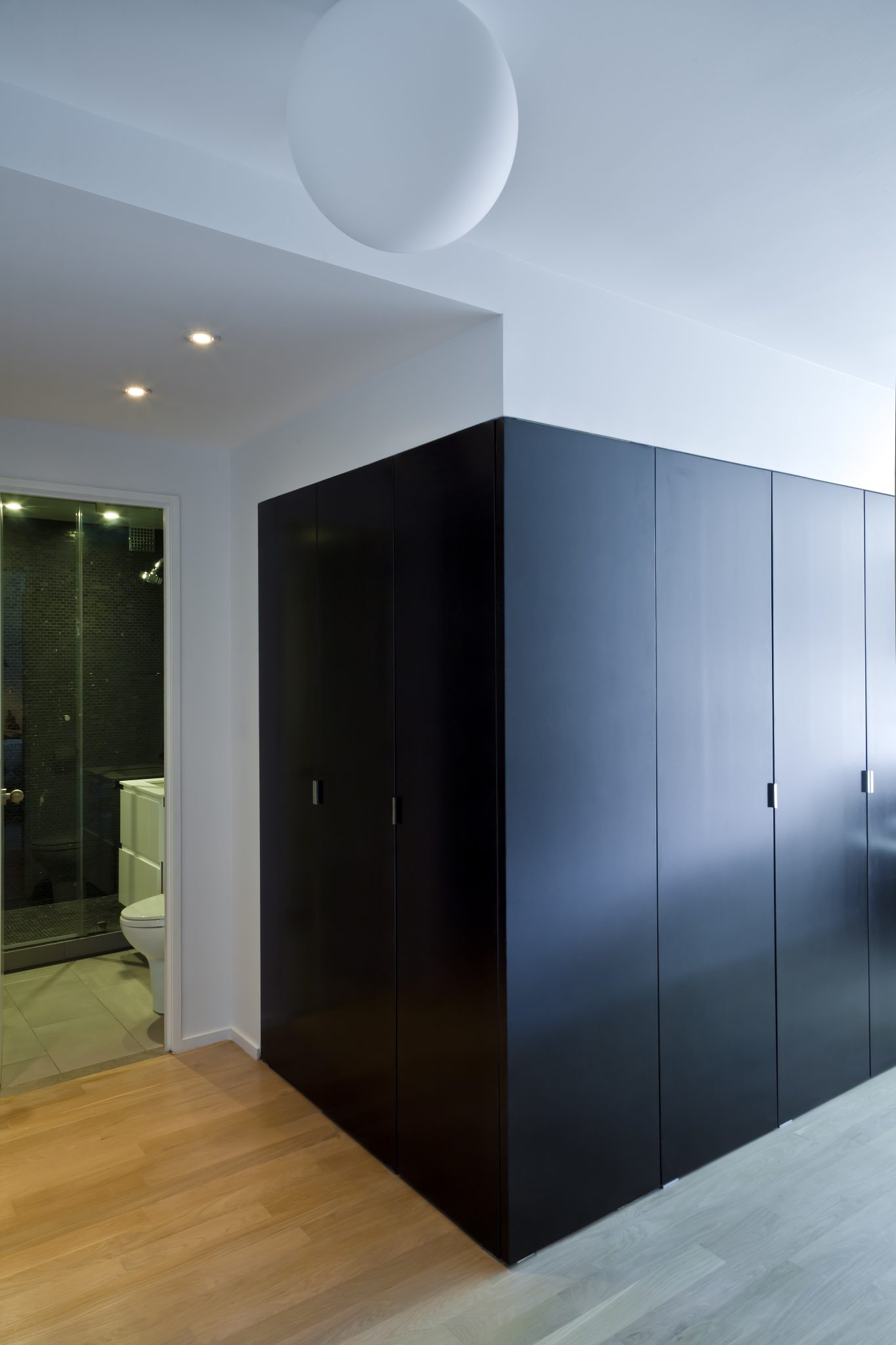 A U201cblack Boxu201d Of Built In Closets Created A Much Needed Hallway Into The  Living Room/bedroom, Separating The Front And Back Of The Apartment While  Providing ...