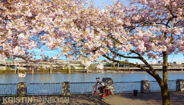 Kristin Finnegan, Portland oregon, photographer, scott sakamoto, japanese historical plaza, Tom McCall Waterfront Park