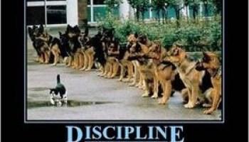 Top Parenting Bloggers Discuss (8): Discipline
