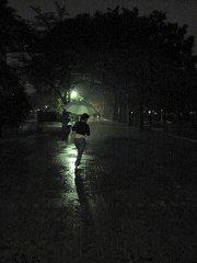 雨が強くなった。もっと早く行っておけばよかった。