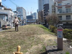 なぜか堤防の両脇に建物が…(奥は二子玉川駅)